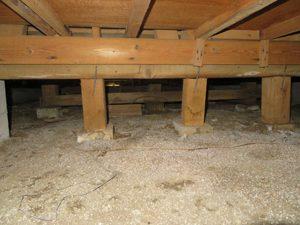 シロアリが発生する原因は「床下の湿気!」どんなお宅でも発生する可能性がある