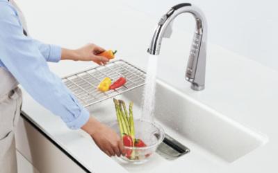 Lクラスの浄水オプション